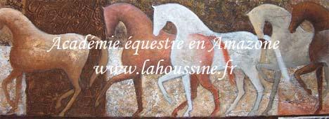 La Houssine La Houssine: École d'équitation et chambre d'hôtes en Eure-et-Loir